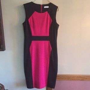 Calvin Klein size 6 fuchsia pink and black dress